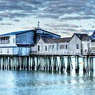 The Pier by Poete100
