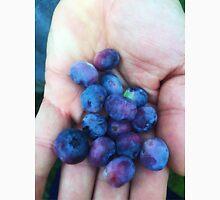Backyard Blueberries Unisex T-Shirt
