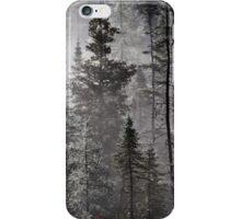 Hauntingly Beautiful iPhone Case/Skin