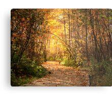 Northern trails Metal Print