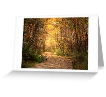 Northern trails Greeting Card