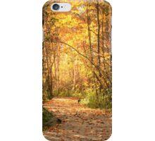 Northern trails iPhone Case/Skin