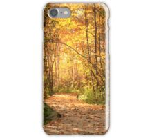 Northern trails iPhone Case/Skin