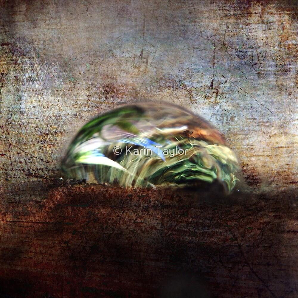Water Drop by © Karin Taylor