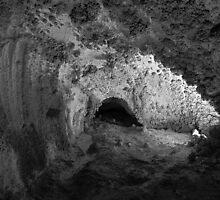 Carlsbad Caverns Study 1 by Robert Meyers-Lussier