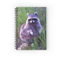 Won't you be my friend?   Stanleigh and Friends Spiral Notebook