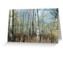 Brushland Greeting Card