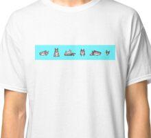 blue heeler(s) Classic T-Shirt