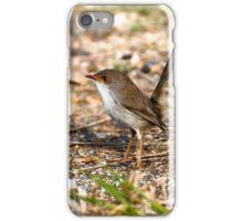Little wren 0001 iPhone Case/Skin