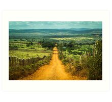 Rural road Art Print