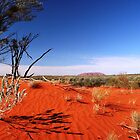 Red Desert, Distant Uluru  by tracyleephoto