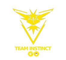 Instinct Team - GO Photographic Print