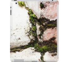 { Corners: where the walls meet #12 } iPad Case/Skin