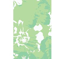 Green Abstract Flower Painting Photographic Print