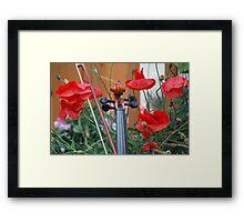Poppies Framed Print
