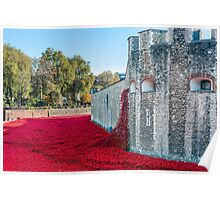 Cascading Poppies, Tower of London Poster