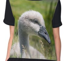 Cygnet in long grass II Chiffon Top