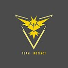 Team Instinct by Zanie