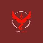 Team Valor by Zanie