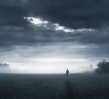 In The Silence by Mikko Lagerstedt