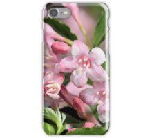 Playful Pinks iPhone Case/Skin