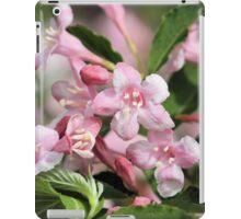 Playful Pinks iPad Case/Skin