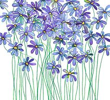 Purple Daisies in Watercolor & Colored Pencil  by micklyn