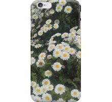 Daisy Floral iPhone Case/Skin