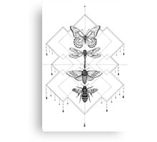 Flying Insects Canvas Print