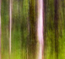 Mitchell Park ~ an impressionist's view III Sticker