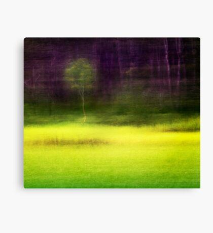 Mitchell Park ~ the impressionist's view II Canvas Print