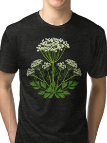 Anise Tri-blend T-Shirt