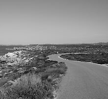 Riding on Rottnest by Anja Fuechtbauer