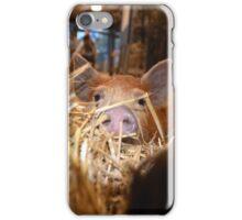 Oink! iPhone Case/Skin