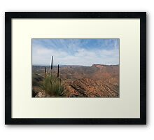 Three grass trees Framed Print