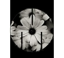 MSFTS + FLWRS Photographic Print