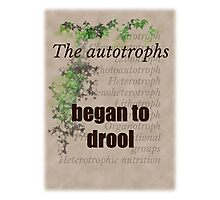 Big Bang Theory - The autotrophs began to drool, Photographic Print