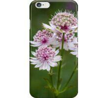 Flower Jewels iPhone Case/Skin