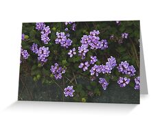 Purple Confetti Greeting Card