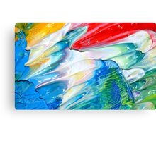 Fairy Wings Canvas Print