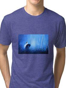 Maybe a Dream Tri-blend T-Shirt
