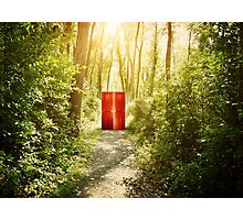 Magical Red Surreal Doors in Nature Forest  Photographic Print