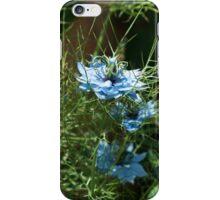 Blue Love-in-a-Mist iPhone Case/Skin