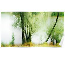 Artscape...........Willow Tree on the Rhine Poster