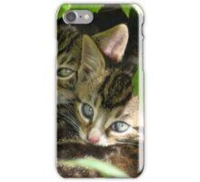 Kittens hiding iPhone Case/Skin