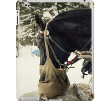 Winter Horse iPad Case/Skin