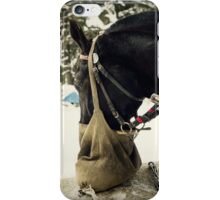 Winter Horse iPhone Case/Skin