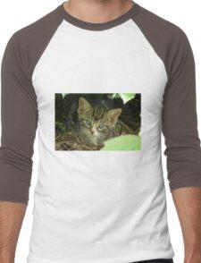 Kitten Sweetheart Men's Baseball ¾ T-Shirt