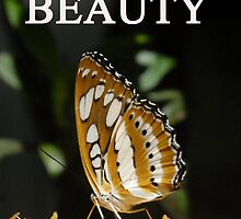 Beauty and butterfly by David Lee Thompson