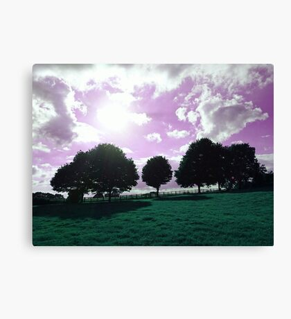 Battlefield Trees Canvas Print